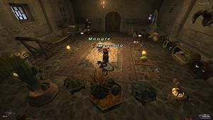 Click image for larger version  Name:Final Fantasy XI Mog House 3.jpg Views:116 Size:19.4 KB ID:3794