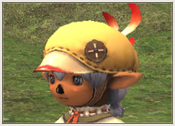 Name:  ChocoboBeret.jpg