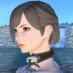 Name:  Mandragora Choker.jpg